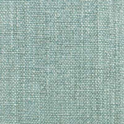 S1021 Robins Egg Fabric