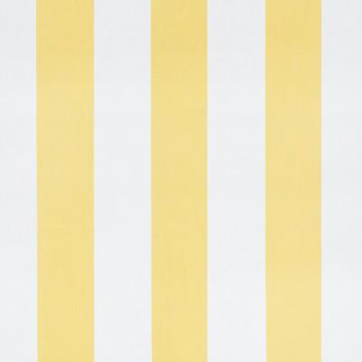 S1262 Lemon Fabric