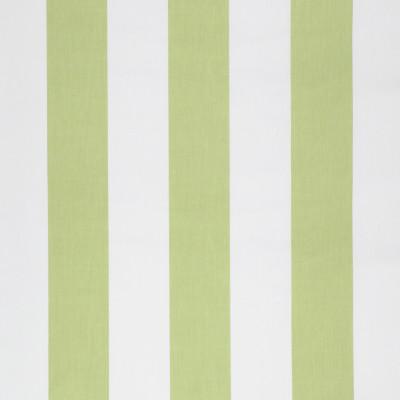 S1264 Celery Fabric