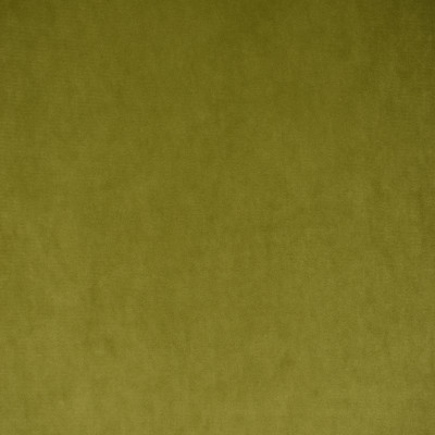 S1492 Olive Fabric