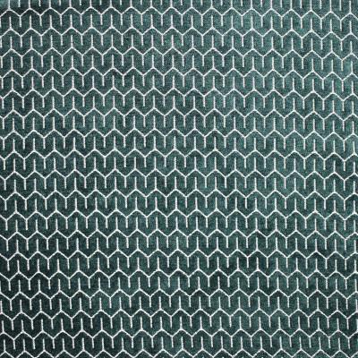 S1821 Kale Fabric
