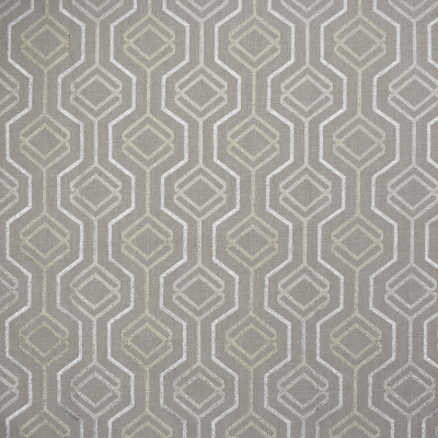 S1893 Taupe Fabric