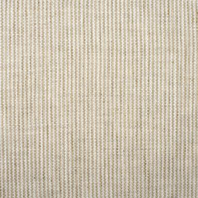S2029 Ecru Fabric