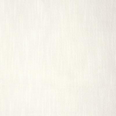 S2119 White Fabric