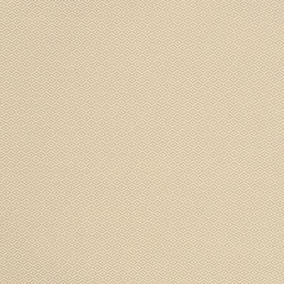 S2139 Chai Fabric