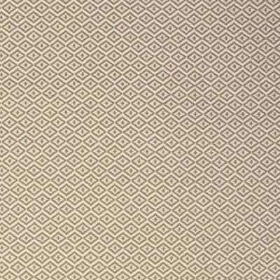 S2147 Dune Fabric