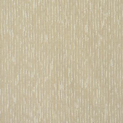 S2154 Beach Fabric