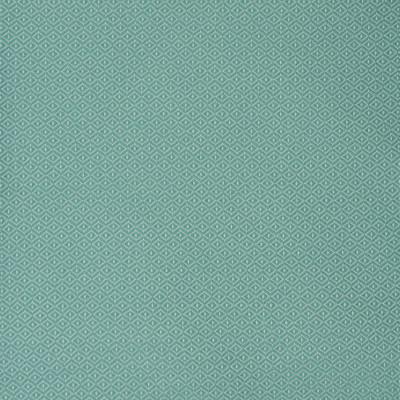 S2174 Surf Fabric