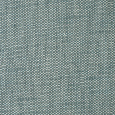 S2179 Denim Fabric