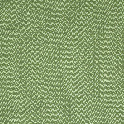 S2211 Endive Fabric