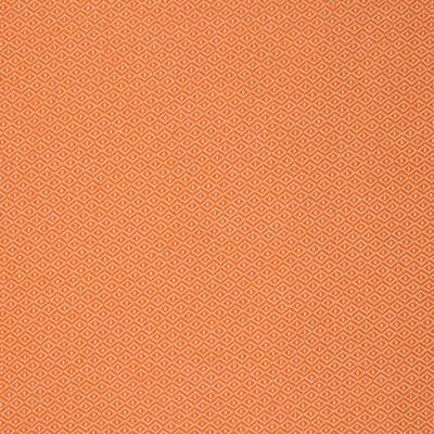S2226 Citrus Fabric