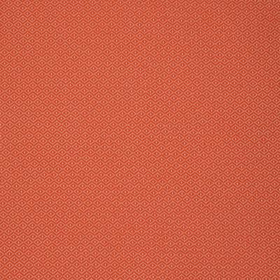 S2232 Peach Fabric