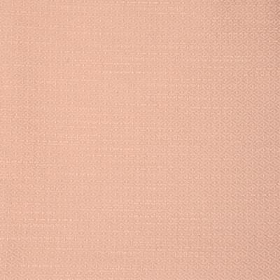S2235 Blush Fabric