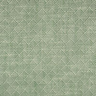 S2250 Endive Fabric