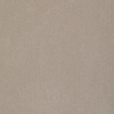 S2297 Stone Fabric