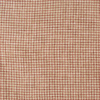 S2393 Coral Fabric
