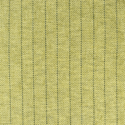 S2406 Kiwi Fabric