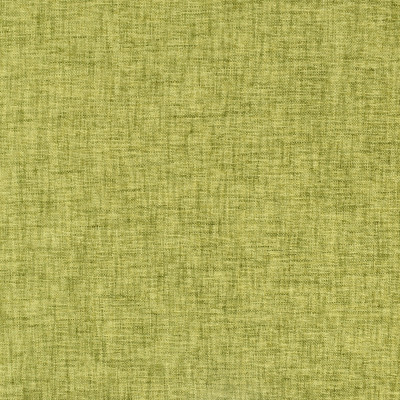 S2409 Citrus Fabric