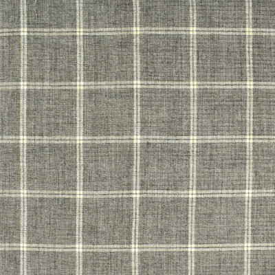 S2412 Elephant Fabric