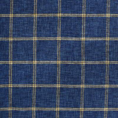 S2420 Indigo Fabric