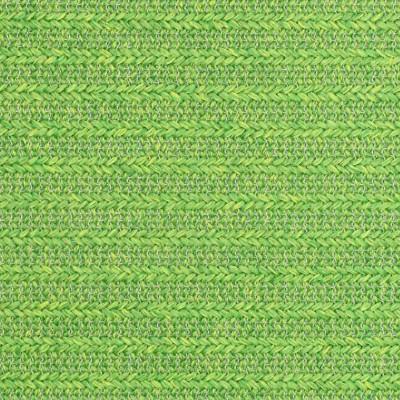 S2431 Palm Fabric
