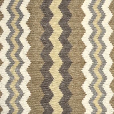 S2455 Dune Fabric