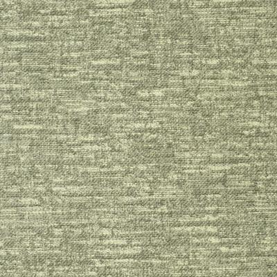 S2476 Fern Fabric