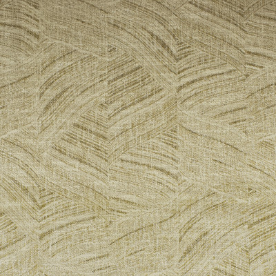 S2538 Natural Fabric