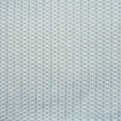 S2645 Chambray Fabric