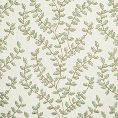 S2672 Green Tea Fabric