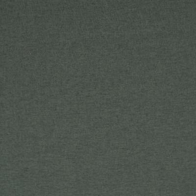 S2732 Tourmaline Fabric