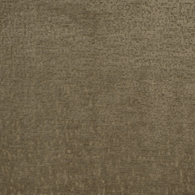 S2793 Mushroom Fabric