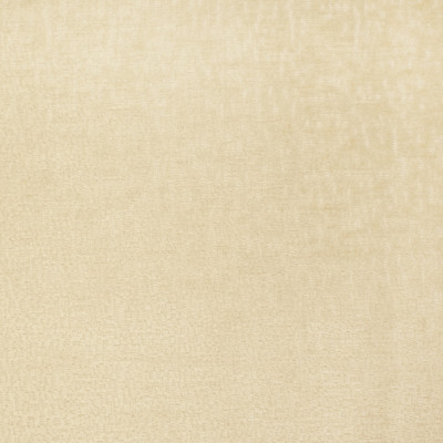 S2805 Custard Fabric