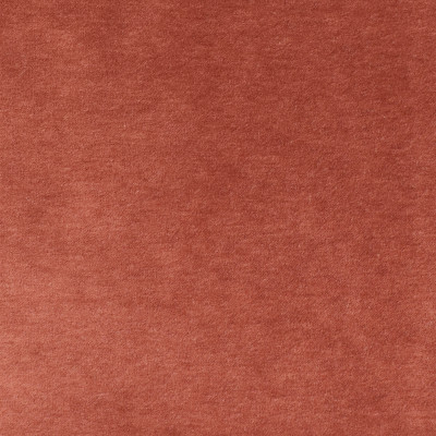 S2843 Rose Fabric