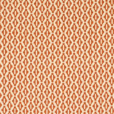 S2846 Rust Fabric