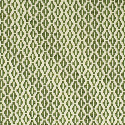 S2855 Fern Fabric