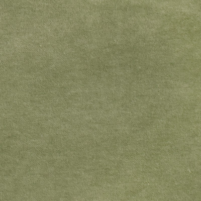 S2862 Lilypad Fabric