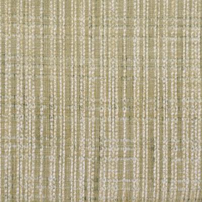 S2863 Mist Fabric