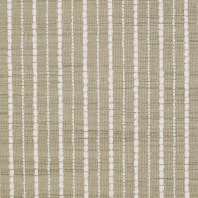 S2906 Sand Fabric