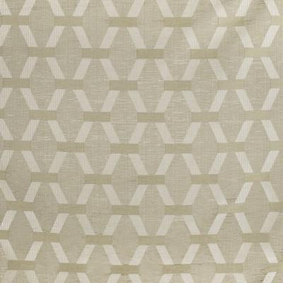 S2909 Raffia Fabric