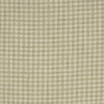 S2918 Beach Fabric