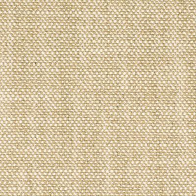 S2920 Sand Fabric