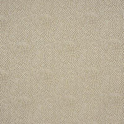 S2961 Constellation Fabric