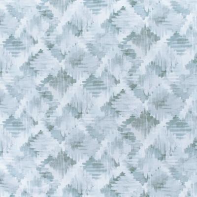 S3006 Chambray Fabric