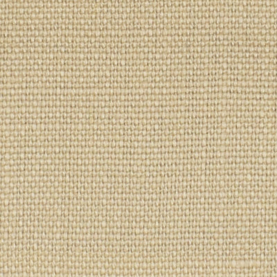 S3286 Canvas Fabric