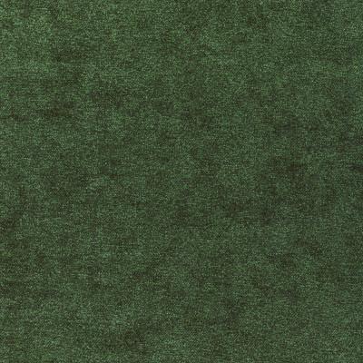 S3543 Green Fabric