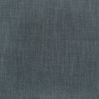 S3656 Denim Fabric