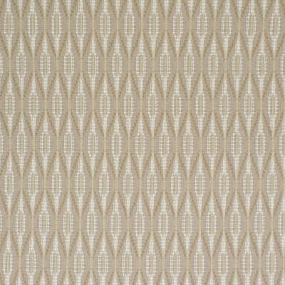 S3670 Dune Fabric