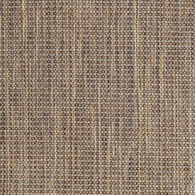 S3702 Twig Fabric