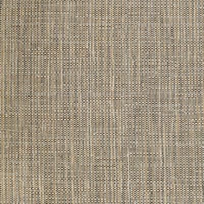 S3703 Twig Fabric